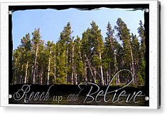 Acrylic Print featuring the photograph Reach Up And Believe by Susan Kinney