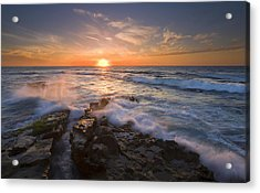 Reaching For The Sun Acrylic Print by Mike  Dawson