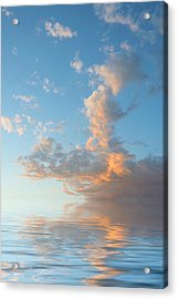 Reaching High Acrylic Print by Jerry McElroy
