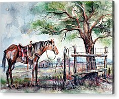 Acrylic Print featuring the painting Ready by Linda Shackelford