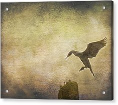 Ready To Land Acrylic Print by Rebecca Cozart