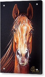 Ready To Run Acrylic Print