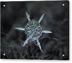Real Snowflake Photo - The Shard Acrylic Print