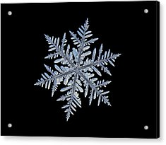 Acrylic Print featuring the photograph Real Snowflake - Silverware Black by Alexey Kljatov