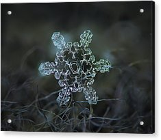Real Snowflake - Slight Asymmetry New Acrylic Print