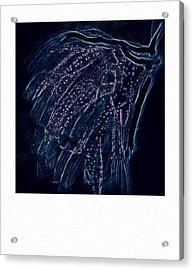 Reanimated  Acrylic Print