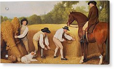 Reapers Acrylic Print by George Stubbs