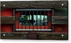 Rear Window Acrylic Print by Murray Bloom