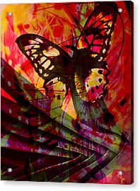 Acrylic Print featuring the photograph reBirth by Ken Walker