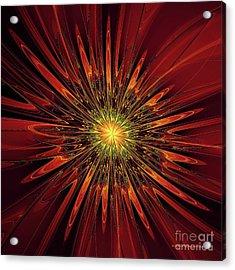 Red Abstract Flower Acrylic Print by Deborah Benoit