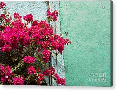 Red And Blue Acrylic Print by Juli Scalzi