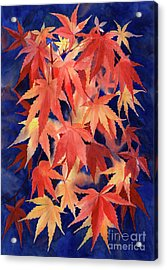 Red And Blue Maple Leaf Design Acrylic Print by Sharon Freeman