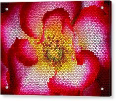 Red And White And Glass Acrylic Print by Leonard Rosenfield