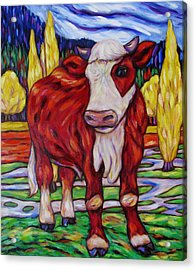 Acrylic Print featuring the painting Red And White Bull Calf by Dianne  Connolly