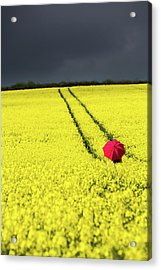 Red And Yellow And....... Acrylic Print