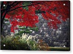 Red Autumn Acrylic Print by Eena Bo