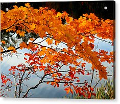 Red Autumn Leaves 3 Acrylic Print