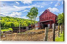 Acrylic Print featuring the photograph Red Barn And Cows by Paula Porterfield-Izzo