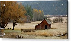 Red Barn In Autumn Acrylic Print