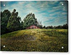 Red Barn On The Hill Acrylic Print by Jai Johnson