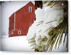 Red Barn Study Iv Acrylic Print by Tim Fitzwater