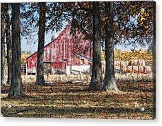Red Barn Through The Trees Acrylic Print by Pamela Baker