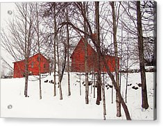 Red Barns Acrylic Print by Betsy Zimmerli