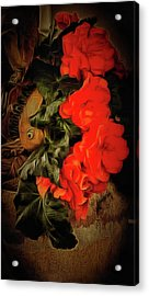 Acrylic Print featuring the photograph Red Begonias by Thom Zehrfeld