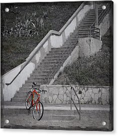 Red Bicycle Acrylic Print by Kevin Bergen