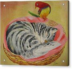 Red Bird Acrylic Print by Lian Zhen