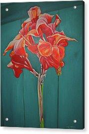 Red Bloom Acrylic Print by John Keaton