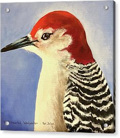 Red Breasted Woodpecker Two Acrylic Print