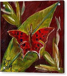 Red Butterfly Acrylic Print by Dalila Jasmin