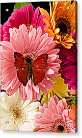 Red Butterfly On Bunch Of Flowers Acrylic Print by Garry Gay