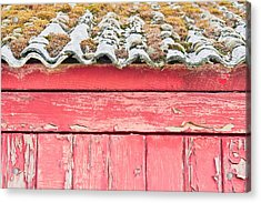 Red Cabin Acrylic Print by Tom Gowanlock