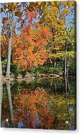 Red Cedar Banks Acrylic Print