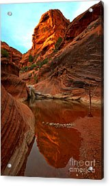 Red Cliffs Reflections Acrylic Print