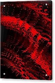 Red Acrylic Print by Cooky Goldblatt