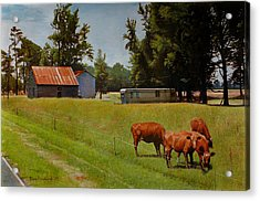 Red Cows On Grapevine Road Acrylic Print by Doug Strickland