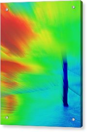 Red Cyclone Acrylic Print by Rose  Hill