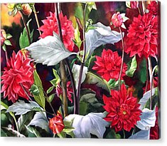 Acrylic Print featuring the painting Red Dahlias by Alfred Ng