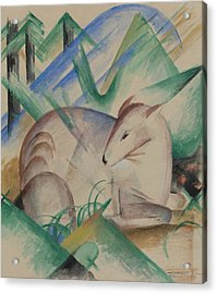 Red Deer Acrylic Print by Franz Marc