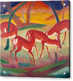 Red Deer One Acrylic Print by Franz Marc