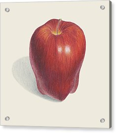 Red Delicious Apple  Acrylic Print by Carlee Lingerfelt
