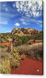 Red Dirt And Cactus In Sedona Acrylic Print by James Eddy