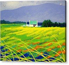 Red Door County Wicklow Acrylic Print by John  Nolan