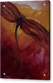 Red Dragonfly Acrylic Print by Julie Lueders