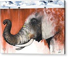 Red Elephant Acrylic Print