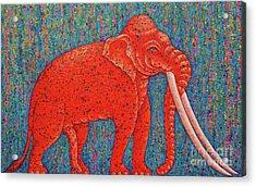 Red Elephant  Acrylic Print by Opas Chotiphantawanon