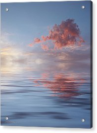 Red Emotion Acrylic Print by Jerry McElroy